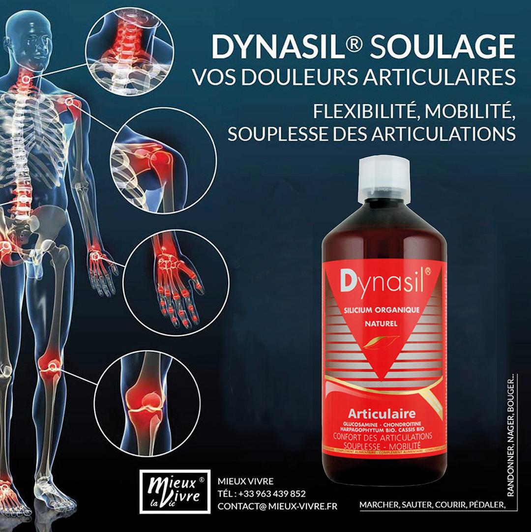 Dynasil - silicium organique